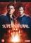 Supernatural - Seizoen 5, (DVD) BILINGUAL // W/ JENSEN ACKLES
