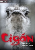 Cigan, (DVD)