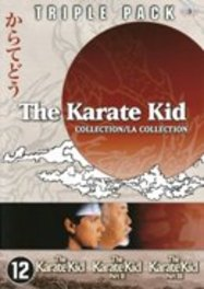 The Karate Kid Collection (3DVD)