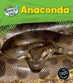 Anaconda Mijn eerste docuboek, Ganeri, Anita, Hardcover