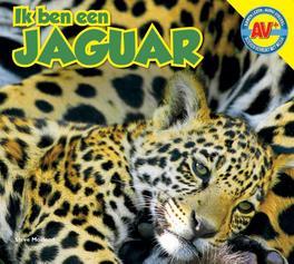 Jaguar AV+, MacLeod, Steve, Hardcover