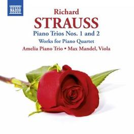 PIANO TRIOS NO. 1 & 2 AMELIA PIANO TRIO R. STRAUSS, CD