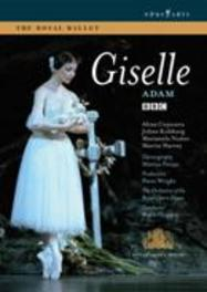 GISELLE, ADAM, ADOLPHE, GRUZIN, B. ROYAL BALLET, ROYAL OPERA HOUSE ORCH./NTSC/ALL REGIONS DVD, A. ADAM, DVDNL