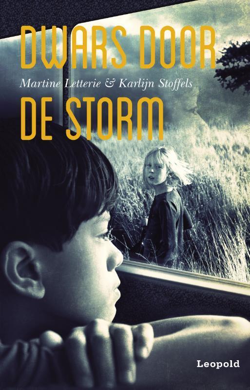 Dwars door de storm Letterie, Martine, Ebook