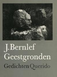 Geestgronden Bernlef, J., Ebook