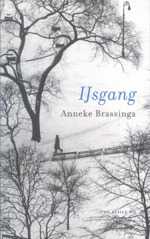 IJsgang gedichten, Brassinga, Anneke, Ebook