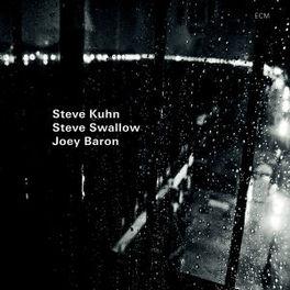 WISTERIA STEVE/STEVE SWALLOW KUHN, CD