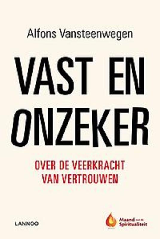 Vast en onzeker Vansteenwegen, Alfons, Ebook