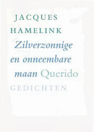 Zilverzonnige en onneembare maan Hamelink, Jacques, Ebook