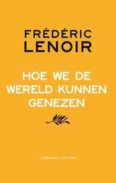 Hoe we de wereld kunnen genezen Lenoir, Frédéric, Ebook