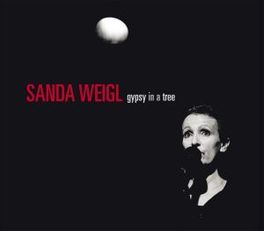 GYPSY IN A TREE FOLK, JAZZ & IMPROV MUSIC MIX SANDA WEIGL, CD