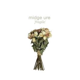 FRAGILE *2014 ALBUM BY ULTRAVOX FRONTMAN* MIDGE URE, CD