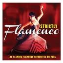 STRICTLY FLAMENCO 40...