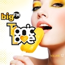 BIGFM TRONIC.. -DIGI- .. LOVE VOL.12