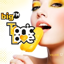 BIGFM TRONIC.. -DIGI- .. LOVE VOL.12 V/A, CD