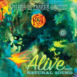 WHERE IS PARKER GRIGGS? RARE & UNRELEASED MATERIAL FROM NATURALSOUND LABEL V/A, Vinyl LP