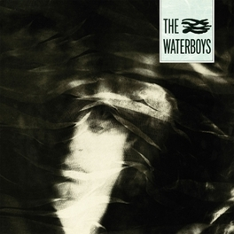 A PAGAN PLACE WATERBOYS, Vinyl LP