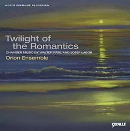 CHAMBER MUSIC WORKS BY WALTER RABL, JOSEF LABOR ORION ENSEMBLE, CD