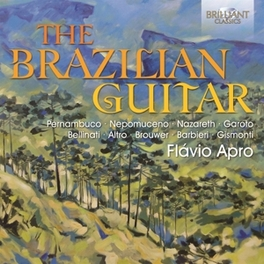BRAZILIAN GUITAR Apro, Flavio, CD