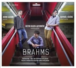 CLARINET SONATAS LALOUM/SEVERE J. BRAHMS, CD