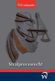 Strafprocesrecht J. van der Sanden, Paperback