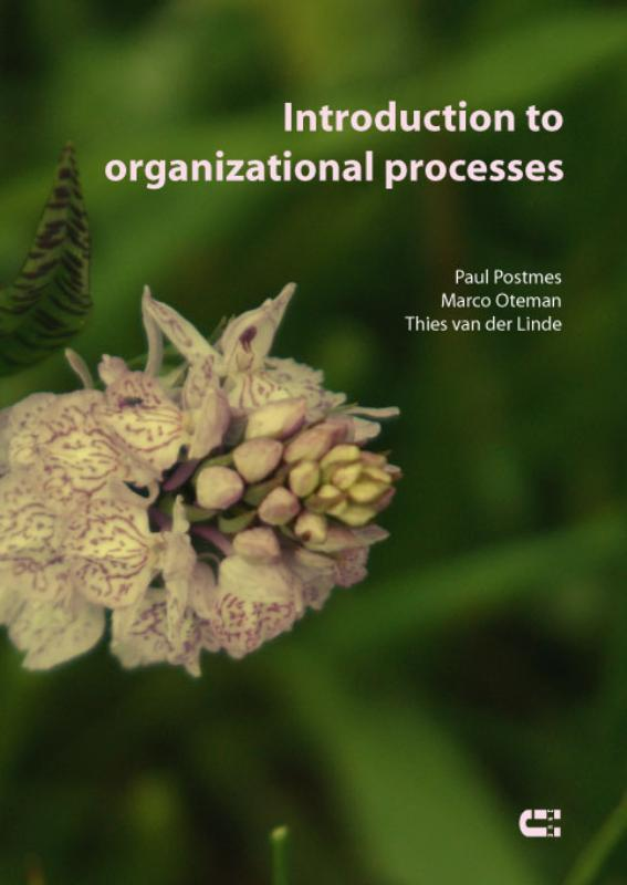 Introduction to organizational processes Oteman, Marco, Postmes, Paul, Paperback