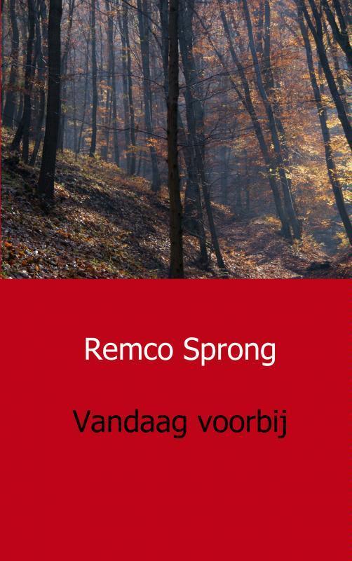 Vandaag voorbij Sprong, Remco, Paperback