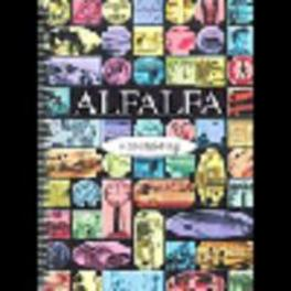 ALFALFA handleiding    sec.ondrwijs Zorg voor alfabetisering, Paperback