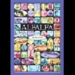 ALFALFA werkboek  sec.onderwijs Zorg voor alfabetisering, Paperback