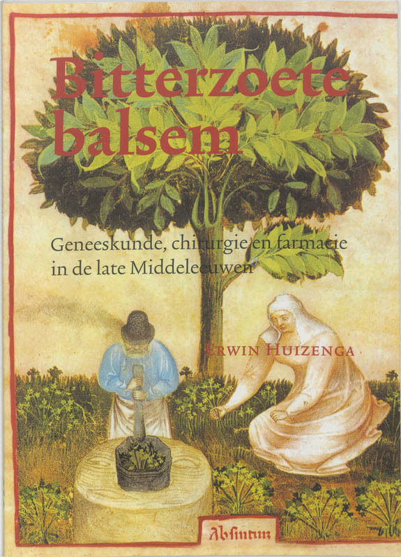 Bitterzoete balsem geneeskunde, chirurgie en farmacie in de late Middeleeuwen, E. Huizenga, Paperback