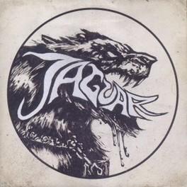 OPENING THE ENCLOSURE JAGUAR, CD