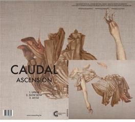ASCENSION CROSS BORDERS BETWEEN KRAUTROCK/POST-PUNK & SPACE ROCK CAUDAL, CD