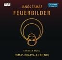 FEUERBILDER TOMAS DRATVA/FABIO DI CASOLA/MISCHA GREULL