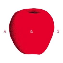 ADAM & STEVE KRUGER, Vinyl LP