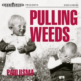 PULLING WEEDS -LP+CD- *2014 ALBUM BY FORMER (DUTCH) DARYLL-ANN FRONTMAN* PAULUSMA, Vinyl LP