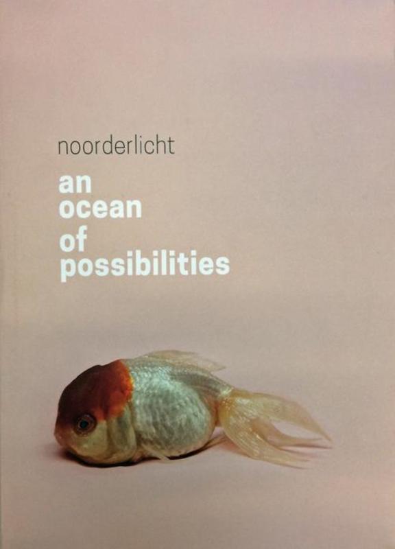An ocean of possibilities Hester Keijser, Paperback