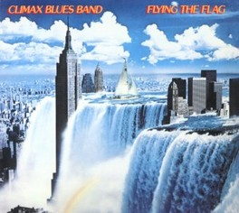 FLYING THE FLAG -DIGI- CLIMAX BLUES BAND, CD