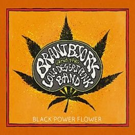 BLACK POWER FLOWER BRANT AND THE LOW BJORK, CD
