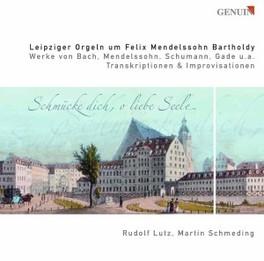 MENDELSSOHN ORGANS IN LEI SCHMEDING/LUTZ Audio CD, MENDELSSOHN-BARTHOLDY, F., CD