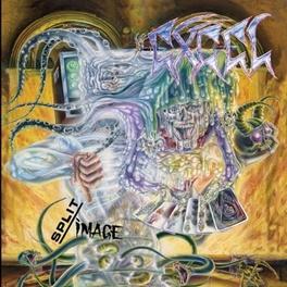 SPLIT IMAGE EXCEL, LP