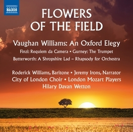 AN OXFORD ELEGY LONDON MOZART PLAYERS/HILARY DAVAN WETTON VAUGHAN WILLIAMS/FINZI/GU, CD