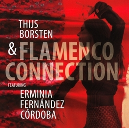 FLAMENCO CONNECTION & THIJS BORSTEN V/A, CD
