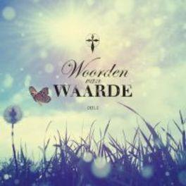 WOORDEN VAN WAARDE 2 W/BOOKLET V/A, CD