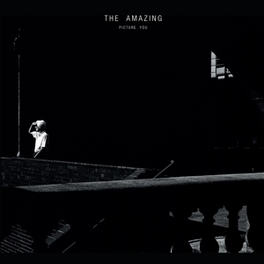 PICTURE YOU DOWNLOAD AMAZING, Vinyl LP