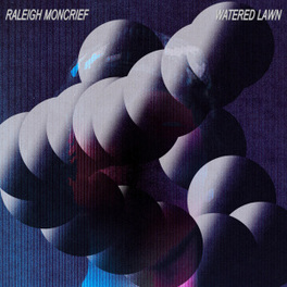 WATERED LAWN DEBUT SOLO ALBUM BY FREQUENT ZACH HILL COLLABORATOR RALEIGH MONCRIEF, Vinyl LP