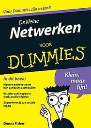 De kleine netwerken voor Dummies Donna Fischer, Paperback