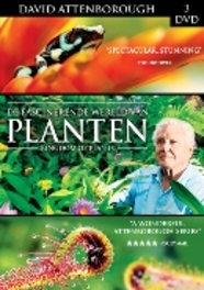 Fascinerende wereld van planten (Kingdom of Plants) (3 dvd)