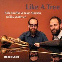 LIKE A TREE W/JESSE STACKEN KIRK KNUFFKE, CD