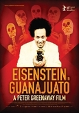 Eisenstein in guanajuato,...
