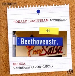 COMPLETE WORKS FOR SOLO P RONALD BRAUTIGAM BEETHOVEN, L. VAN, CD